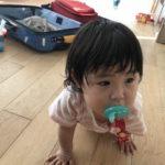 【育児記録59】1歳11ヶ月になりました&日本に一時帰国しています