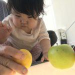 【育児記録54】1歳9ヶ月になりました!